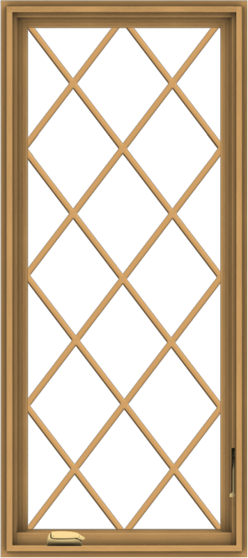WDMA 24x54 (23.5 x 53.5 inch) Pine Wood Dark Grey Aluminum Crank out Casement Window without Grids with Diamond Grills