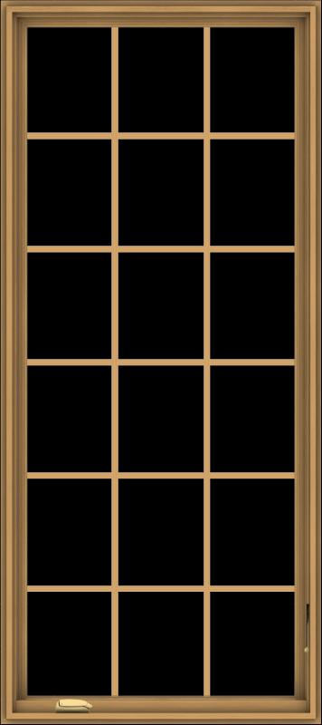 WDMA 32x72 (31.5 x 71.5 inch) Pine Wood Dark Grey Aluminum Crank out Casement Window without Grids