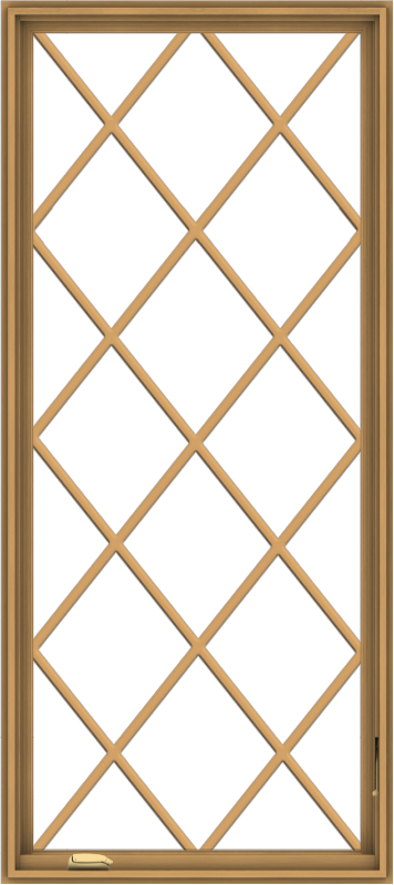 WDMA 32x72 (31.5 x 71.5 inch) Pine Wood Dark Grey Aluminum Crank out Casement Window without Grids with Diamond Grills