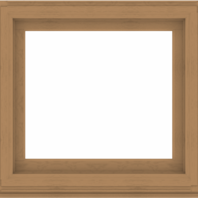 WDMA 38x36 (37.5 x 35.5 inch) Composite Wood Aluminum-Clad Picture Window without Grids-1