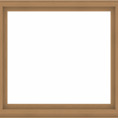 WDMA 64x60 (63.5 x 59.5 inch) Composite Wood Aluminum-Clad Picture Window without Grids-1